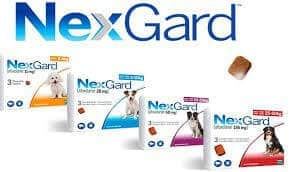 NEXGARD for Dogs and Puppies