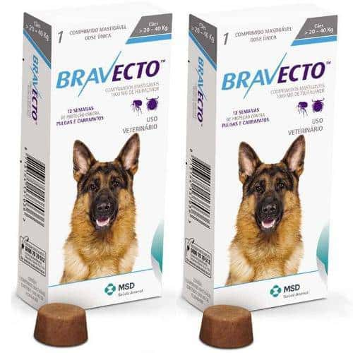 bravecto large dogs
